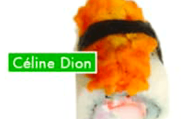 Celine Dion X6Pcs