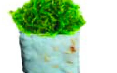 Califonia Végétarien Végé (1) X6Pcs